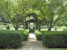 Garden path to summerhouse