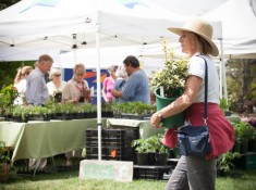 2015 May 9 Hill-Stead May Market-57